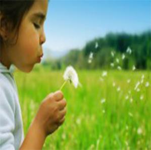mindfulness training Amerongen